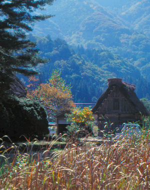 Shirakawa, Japan. Gassho-style house.