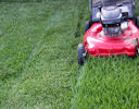 Optimize lawn mowing with math!