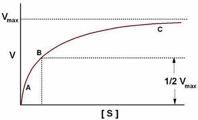 hyperbolic curve?