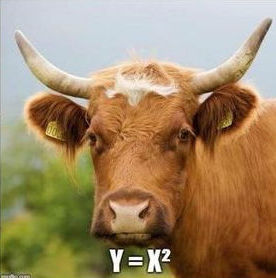 Cattle graphs y = x^2