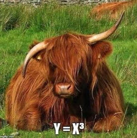 Cattle graphs y = x^3