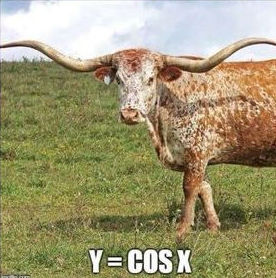 Cattle graphs y = cos x