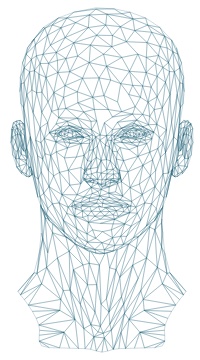 wireframe human head